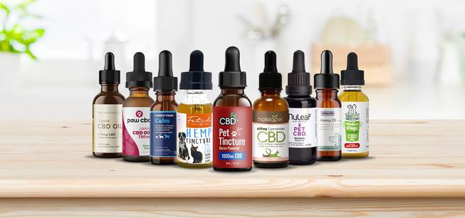 Easy Actions To Cbd Oil For Pet Dogs Uk Holland And Also Barrett Of Your Goals